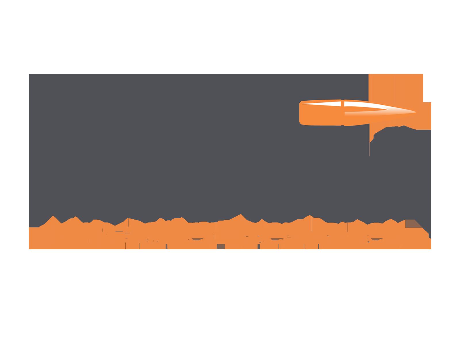 wilshire-gun-web